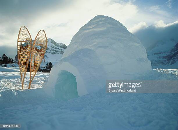 Igloo with snow shoes wedged upright in the snow beside it