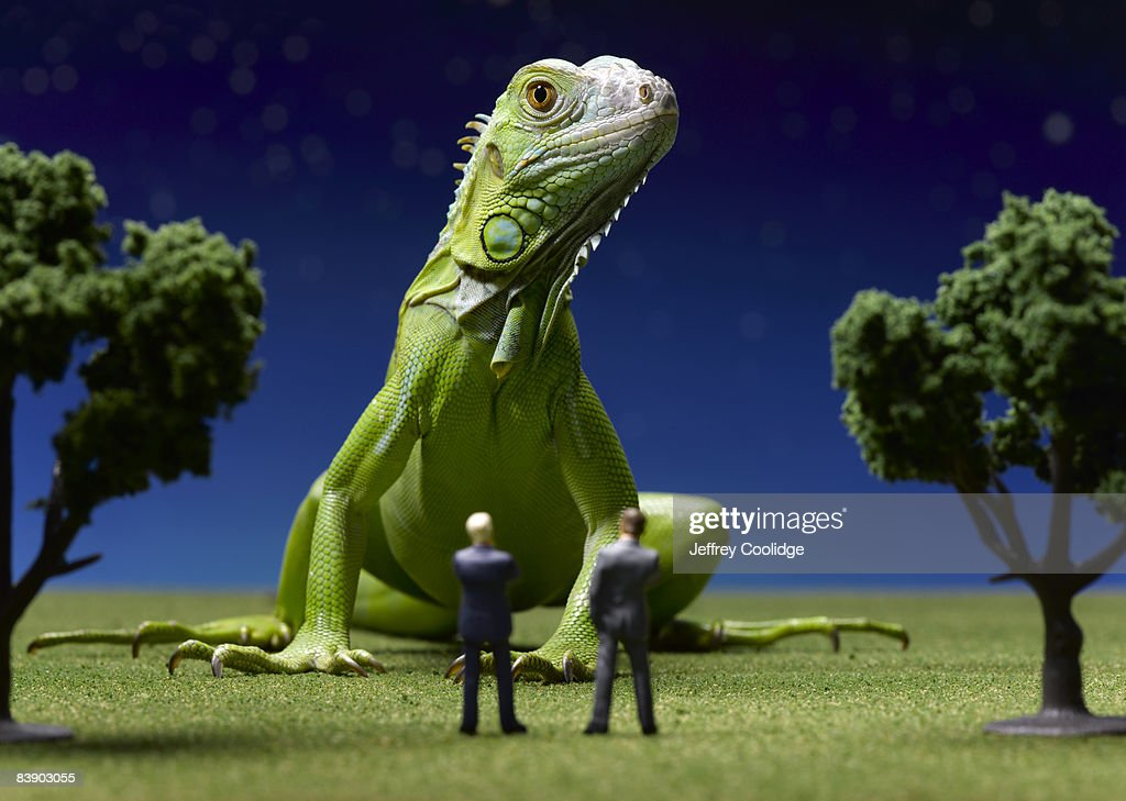 Iguana confronting toy businessmen : Stock Photo