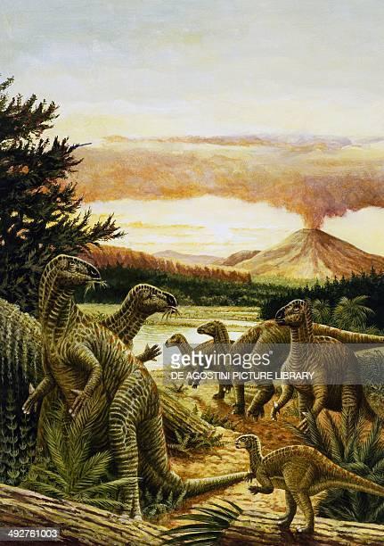 Iguanodon sp Iguanodontidae Middle Jurassic Illustration
