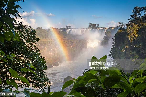 Iguaz? Waterfalls with rainbow, Argentina