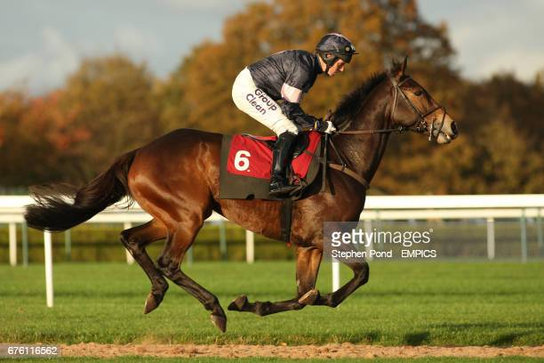 Ikorodu Road ridden by Noel Fehily goes to post for The Subscribe On Line At racingukcom Handicap Hurdle Race