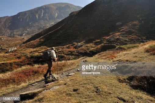 Il cacciatore - The hunter. : Stock Photo