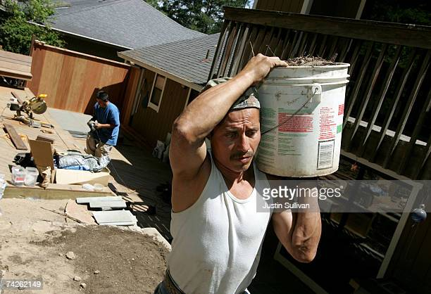 Illegal immigrant Rolando Ambrocio of Guatemala carries a bucket of dirt while working on a landscaping job May 23 2007 in San Rafael California...