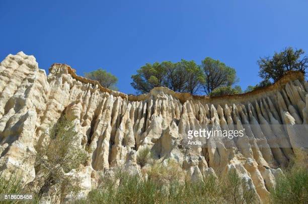 basalt columns geological and tourist site in the small region of Riberal