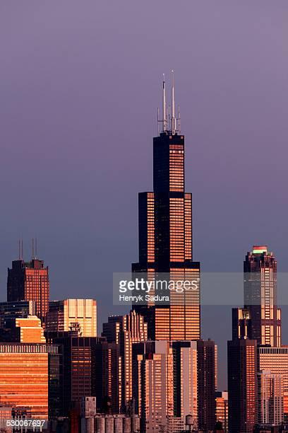 USA, Illinois, Chicago, Gold Coast buildings in autumn