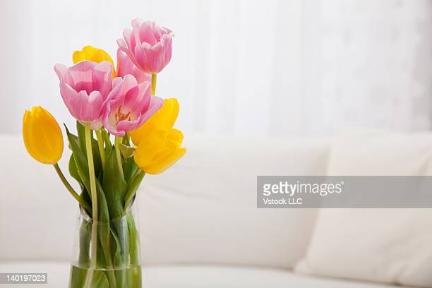 USA, Illinois, Metamora, Pink and yellow tulips in vase