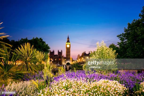 Illuminated Big Ben with a public park in the foreground at night