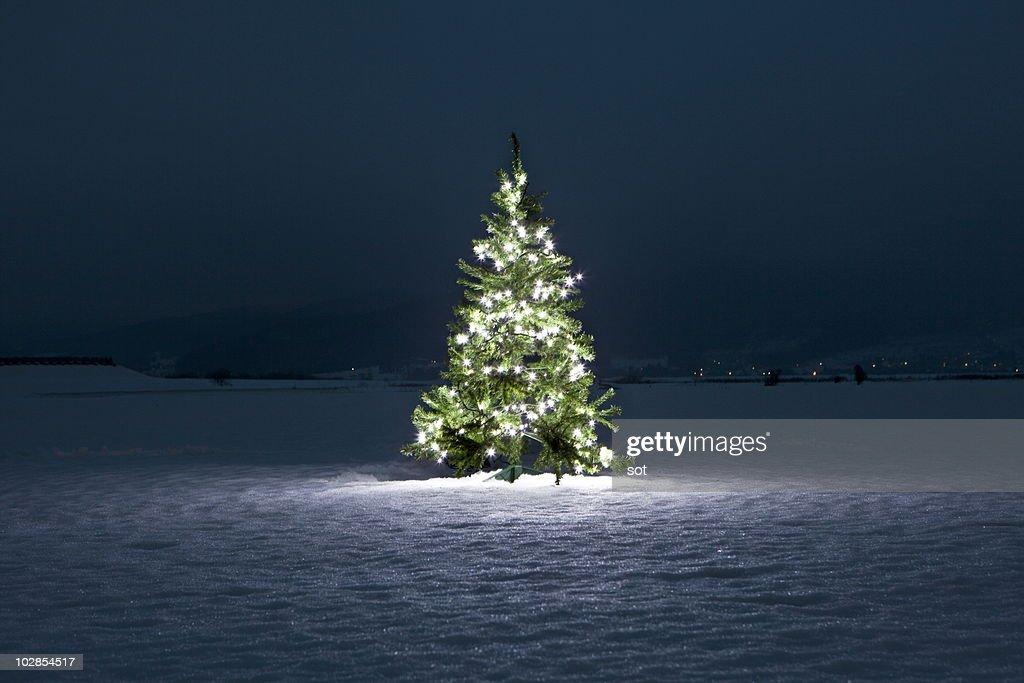 Illuminated christmas tree on the snow at night : Stock Photo