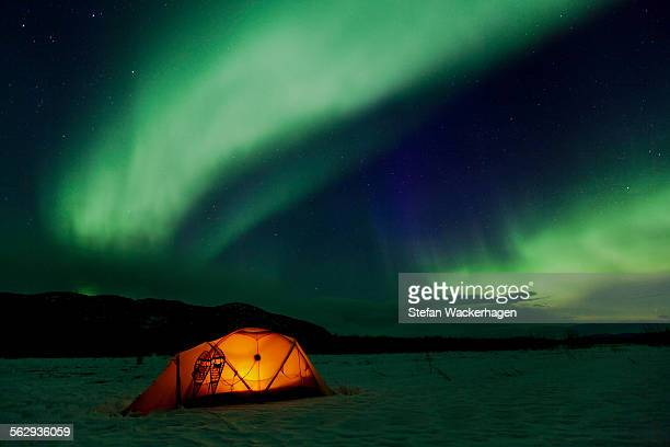 Illuminated expedition tent and traditional wooden snow shoes, Northern Lights, Polar Lights, Aurora Borealis, green, purple, blue, near Whitehorse, Yukon Territory, Canada