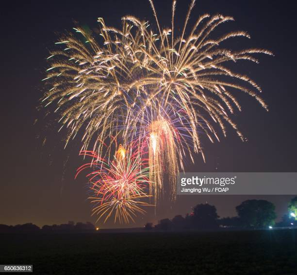 Illuminated fireworks exploding in sky