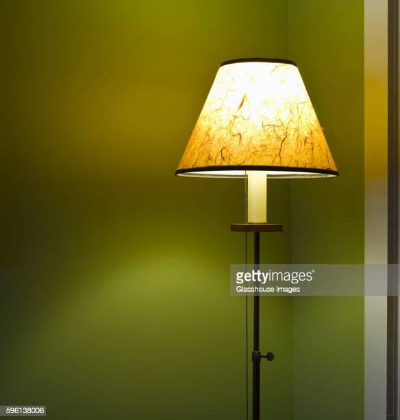 Illuminated Floor Lamp with Shade
