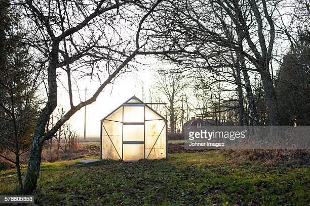 Illuminated greenhouse