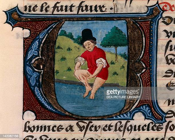 Illuminated initial capital letter with a man applying leeches miniature from the Treaty of Medicine by Aldebrande of Florence manuscript Italy 14th...