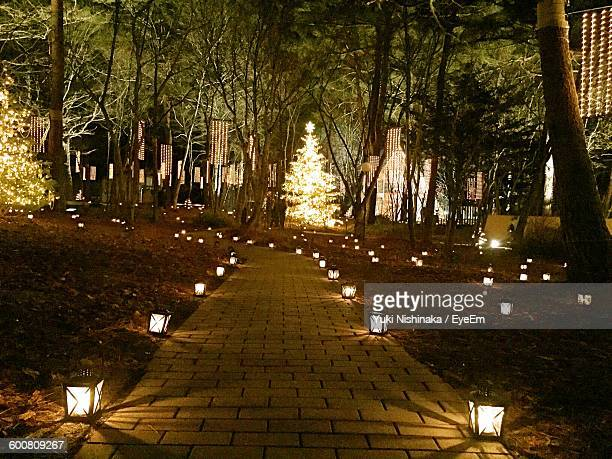 Illuminated Lanterns On Footpath In Park During Christmas