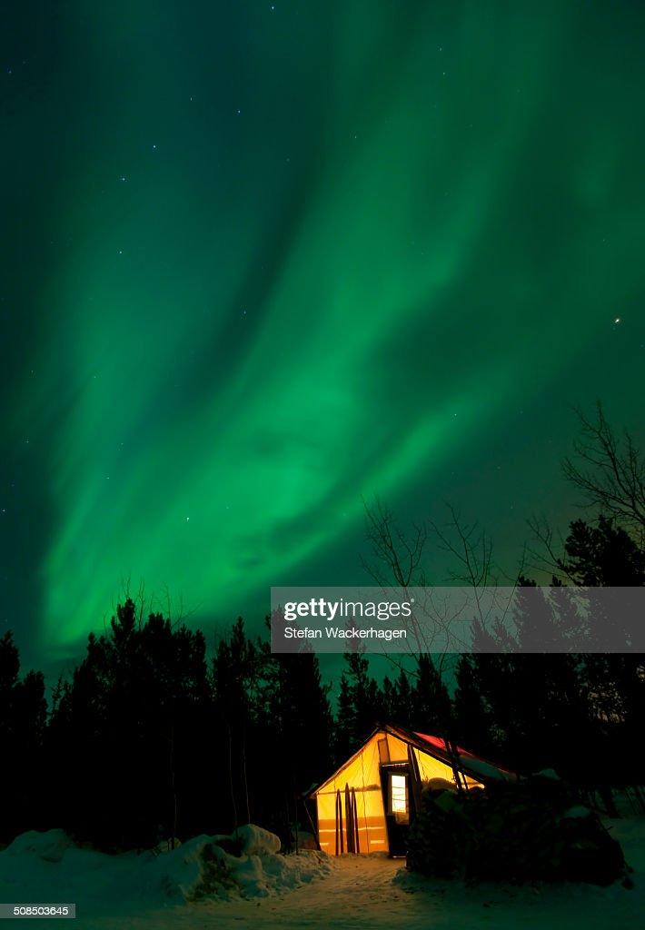 Illuminated, lit wall tent, cabin with swirling northern polar lights, Aurora Borealis, green, near Whitehorse, Yukon Territory, Canada