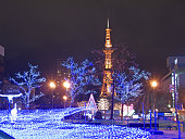 Illuminated Sapporo Tv tower and central park in the night