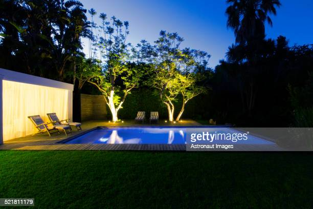 Illuminated swimming pool and trees in backyard at dusk