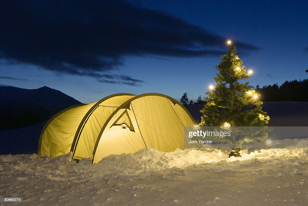 Illuminated tent and Christmas tree in snow : Stock Photo