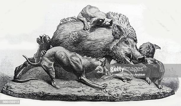 Illustration depicting a statue of a hog being attacked by dogs during a successful hunt Dated 1820
