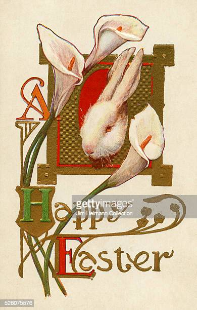Illustration for 1910s Easter postcard featuring white rabbit and white calla lily flowers