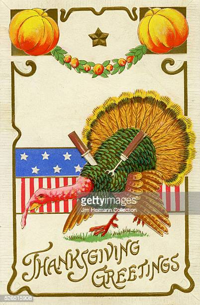 Illustration for a Thanksgiving postcard featuring live turkey stabbed with a fork and a knife