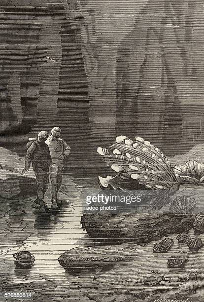 Illustration for the novel 'Twenty Thousand Leagues Under the Sea' by Jules Verne Giant mollusk Engraving