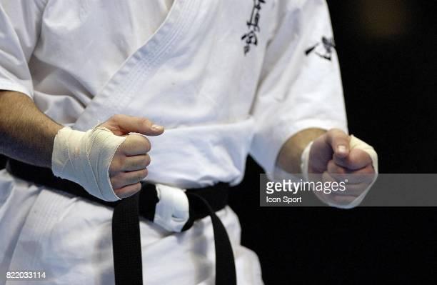 Illustration Karate 9eme World Open karate Tournament Tokyo