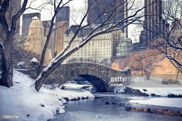 Une tempête de neige à Central Park