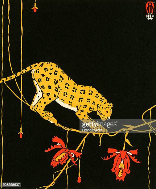 Illustration of a leopard on a jungle vine against a black background by Maxwell Armfield 1914 Screen print