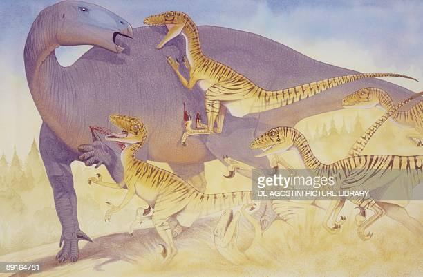 Illustration of Deinonychus attacking
