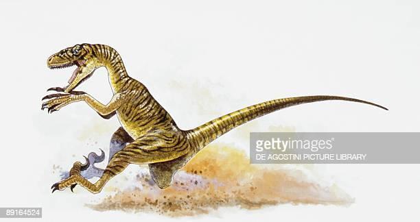 Illustration of Deinonychus running