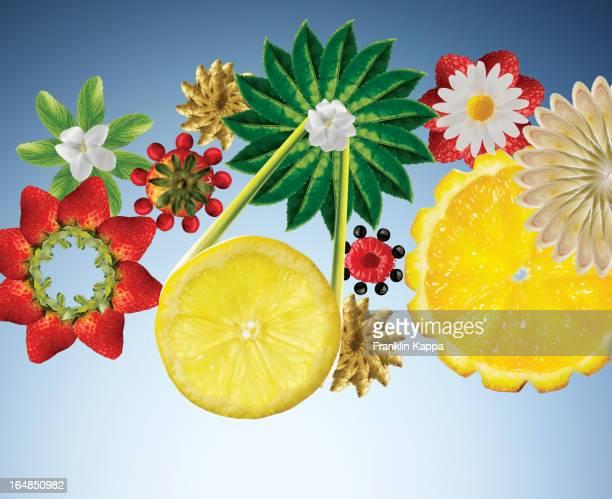 Illustration of fruits and vegetables in flower shapes