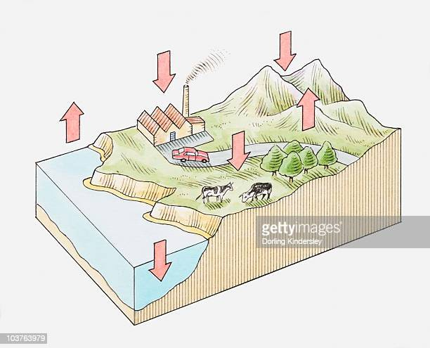 Illustration of oxygen cycle showing coastline, rural, industrial, mountain and forest