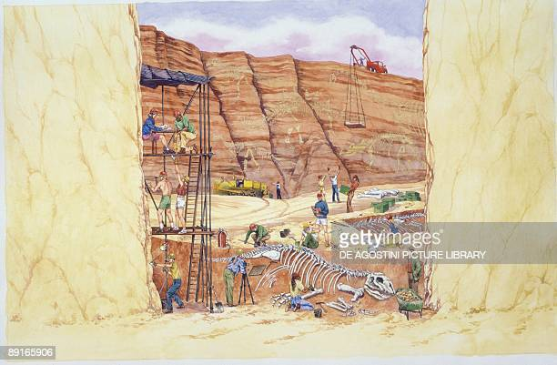 Illustration of people excavating and discovering skeleton of dinosaur