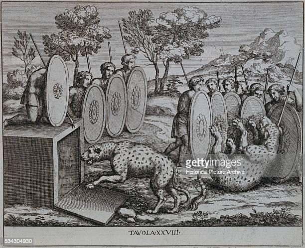 Illustration of Romans Capturing Leopards by Pietro Santo Bartoli