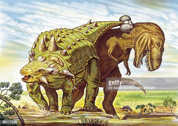 Illustration representing Euoplocephalus and Tyrannosaurus Rex fighting