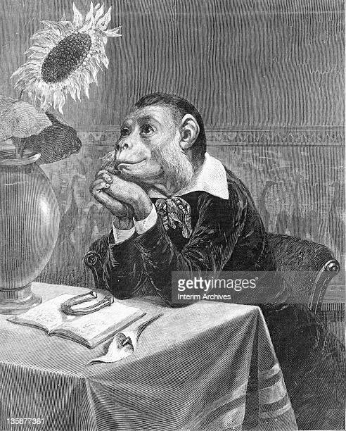 Illustration titled 'The aesthetic monkey' depicting a monkey in Victorian clothing reading a book with a horseshoe on it and contemplating the...