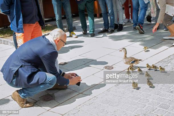 Illustration view of a Duck family walking in the stadium during the 2017 French Tennis Open Day Ten at Roland Garros on June 6 2017 in Paris France