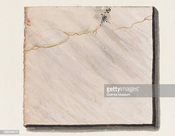 Illustrations of Marble Patterns from Adam Wirsing's 'Marmora et Adfines Aliquos Lapides' Section II Plate III Close up of Illustration