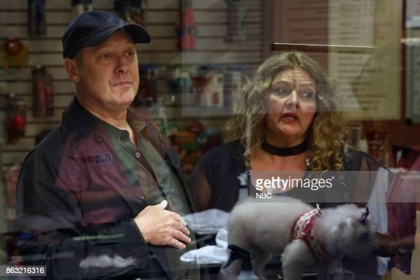 THE BLACKLIST 'Ilyas Surkov ' Episode 505 Pictured James Spader as Raymond 'Red' Reddington Aida Turturro as Heddie Hawkins