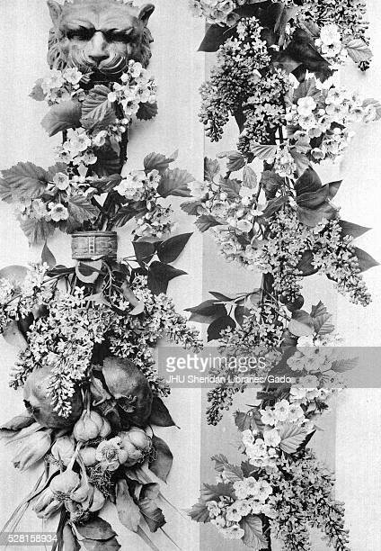 Image from a series entitled 'Festoons and Decorative Groups by Martin Gerlach' depicting two floral decorations with lion's head on top fruits...