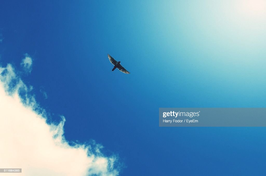 Image of blue sky