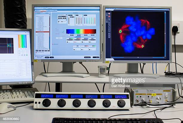 Image of cells through a confocal microscope at the Cancer Research UK Cambridge Institute on December 9 2014 in Cambridge England Confocal...