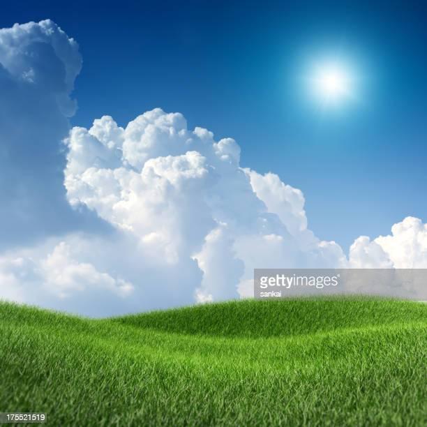 画像の XXXL グリーンフィールドの青い空の下