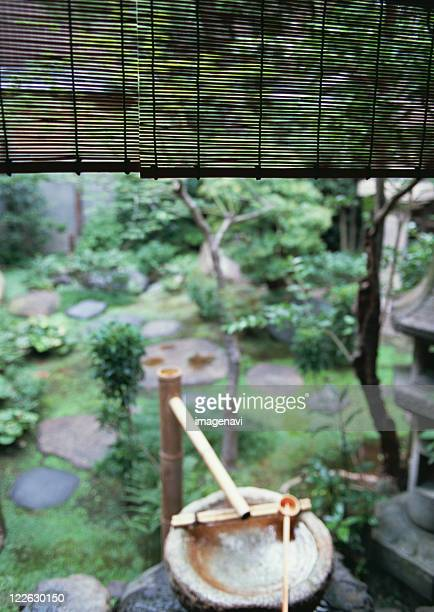 Image of Japanese garden