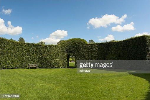 Image of lush English garden with groomed hedge walls