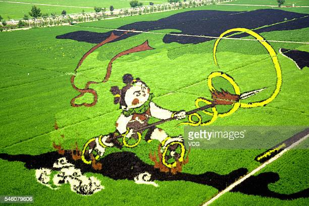 A 3D image of Nazha is grown on the field at a creative agriculture park in Shenbei New Area on July 10 2016 in Shenyang Liaoning Province of China...