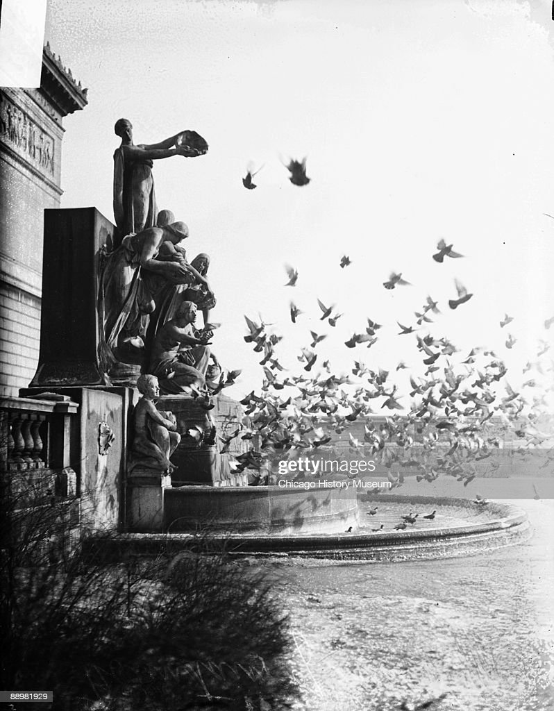 Image of pigeons flying from the Fountain of Great Lakes designed by Lorado Taft located on the south face of the Art Institute of Chicago located at...
