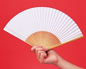 Image of Right Hand Holding a Fan, Front View