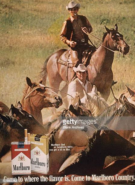 Image of two 'Marlboro Man' cowboys herding horses in a magazine ad for Marlboro cigarettes 1970s